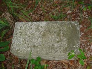 BLAND COUNTY Rocky Gap DAVIDSON John Goolman 3-8-1793